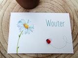 Geboortekaartje Wouter met houten lieveheersbeestje