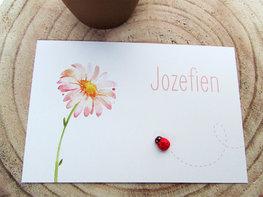 Geboortekaartje Jozefien