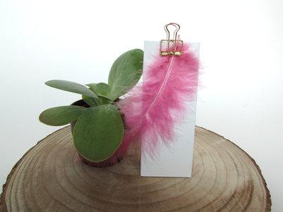 Pluimen magnolia