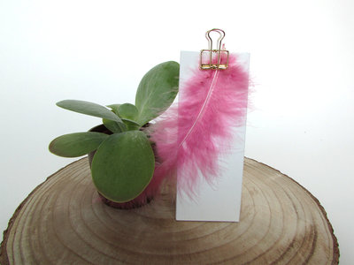 Pluimen magnolia doopsuiker