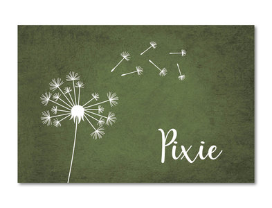 Geboortekaartje Pixie