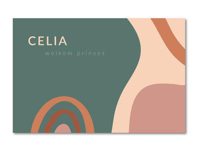 Geboortekaartje Celia